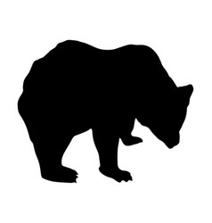 bear silhouette isolated vector image