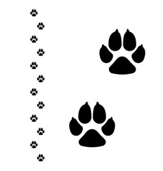 Dogs paw dog footprint flat icon isolated vector