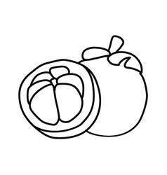 mangosteen fruit icon design sign vector image