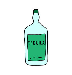 Tequila - mexican traditional alcoholic drink vector