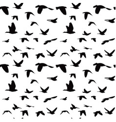 flock of doves seamless pattern vector image vector image