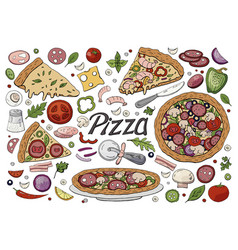 big italian pizza and pizza ingredients vector image