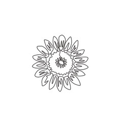 one single line drawing beauty fresh sunflower vector image