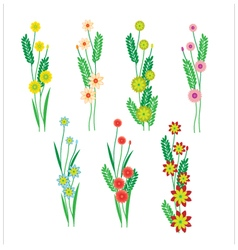 Flowers and leaves on a white background vector image vector image