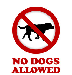 no dog allowed sign vector image