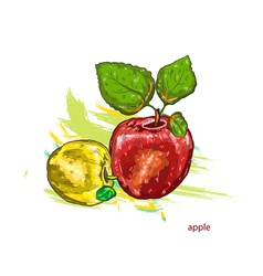 apples with colorful splashes vector image