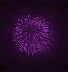 beautiful bright firework isolated on black vector image