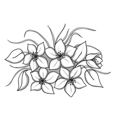 black-and-white bouquet flowers with leaves and vector image