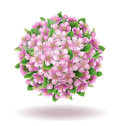 Blooming ball vector image
