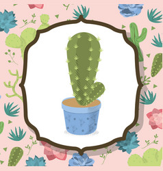 Cactus on pot over desert plants background vector