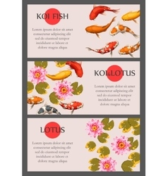 Cards with koi fish and lotus vector image