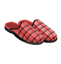 Male slippers home footwear isolated male pair vector