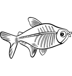 xrayfish for coloring vector image