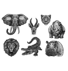 wild animals sketch icons for african zoo vector image