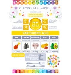 pantothenic acid vitamin b5 rich food icons vector image