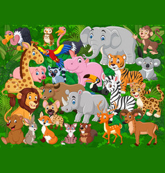 cartoon wild animals collection set vector image