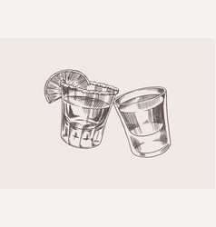 Cheers toast vintage mexican tequila badge glass vector