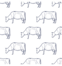 cow vintage engraved seamless pattern vector image