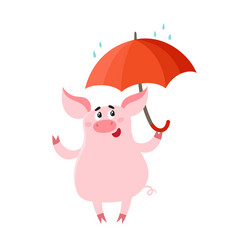 Cute pig with red umbrella isolated on white vector
