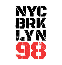 district new york brooklyn vector image