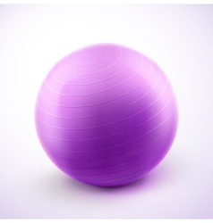 Fitness ball vector image