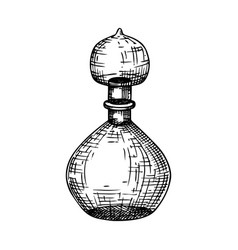 Hand sketched glass bottle in vintage style glassw vector