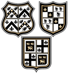 heraldic royal emblem badge vector image