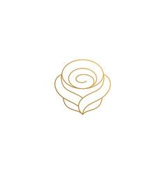 outline design elegant rose hand drawn vector image