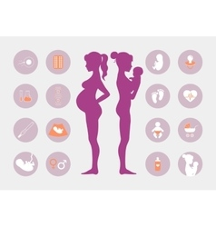 Pregnancy and birth icons set vector