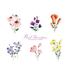 Set isolated cute watercolor flowers elements vector