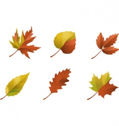 nature logos 09 autumn leaves vector image vector image