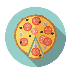 Pizza icon in flat style vector image
