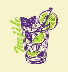 alcohol cocktail mojito vector image