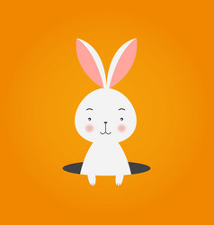 bunny in hole on orange background vector image