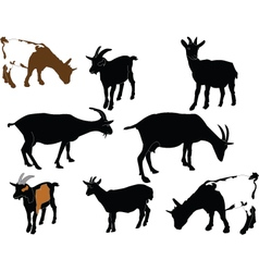Goats collection vector