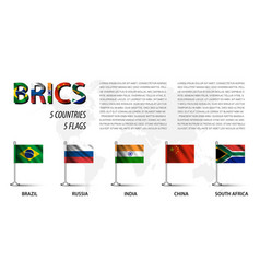 realistic flag of brics vector image