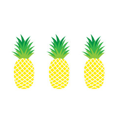 Set of pineapples exotic fruit vector