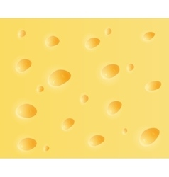 Cheese background vector image vector image