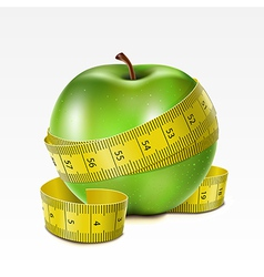 Apple with centimeter vector image