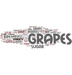 Are my grapes ready to harvest text background vector
