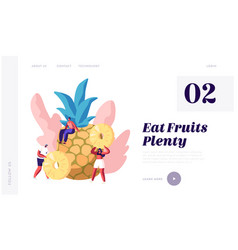 fruits source vitamin and health website vector image