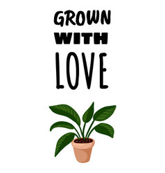 Grown with love postcard potted succulent vector