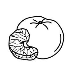 orange fruit icon design sign vector image