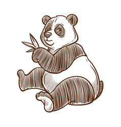 Panda bear with bamboo leaves isolated sketch vector