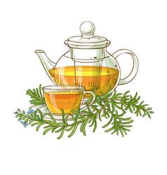 rosemary tea in teapot vector image