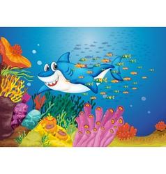 Shark in sea background vector image