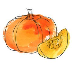 drawing pumpkin vector image