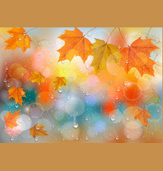 autumn colorful background with leaves and vector image