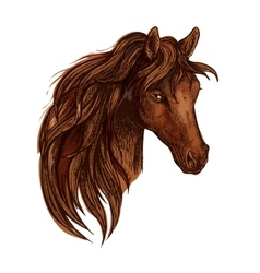 Brown horse portrait with wavy mane vector