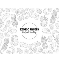 exotic fruits tasty and healthy banner template vector image